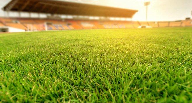 Bouw Feyenoord City met nipte meerderheid goedgekeurd door Rotterdamse Raad