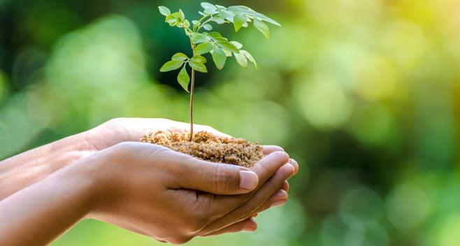 Hypotheekadviseurs werven klanten voor verduurzamende bedrijven