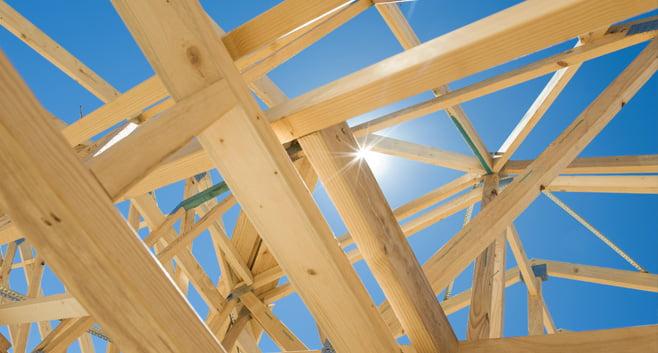 TNO rapport over duurzaam bouwen met hout blijft voor kritiek zorgen