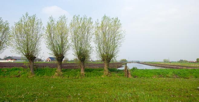 Onteigening dreigt voor boeren in de Krimpenerwaard voor enorm natuurgebied